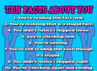 Funny Facts