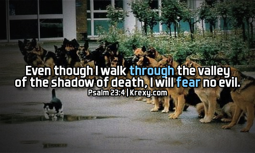 Bible Quotes Psalm 6060 Even Though I Walk Through The Sh Krexy Extraordinary Does Jesus Fear Death Quotes