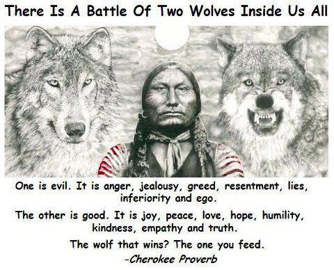 Native American Quotes Old Cherokee Proverb Two Wolves Krexy Classy Native American Quotes