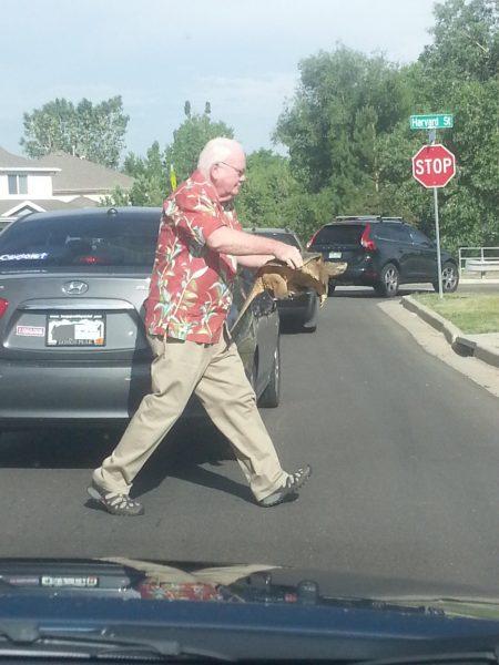 Turtle Save