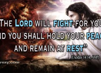 Bible Quotes Exodus 14:14 amp